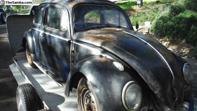 TheSamba com :: VW Classifieds - 1958 VW Bug Rag Top Barn Find Rust Free