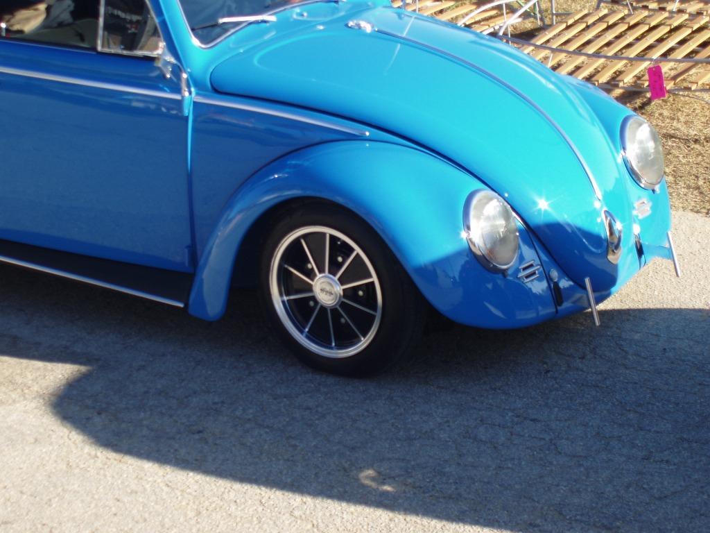 Florida Bug Jam 2010