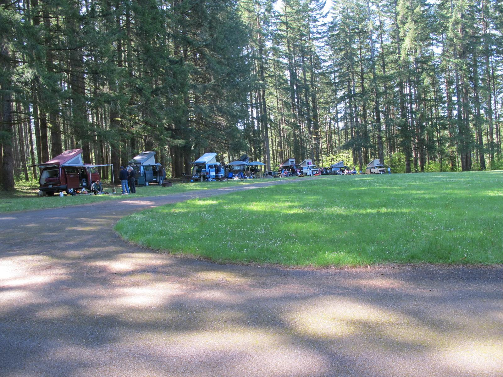 Silver Falls OR annual Samba campout