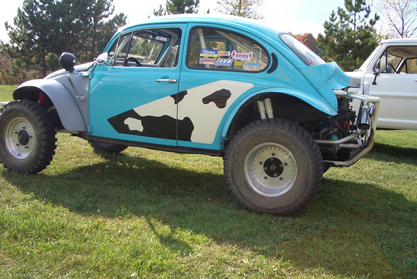 Cow Bug Baja