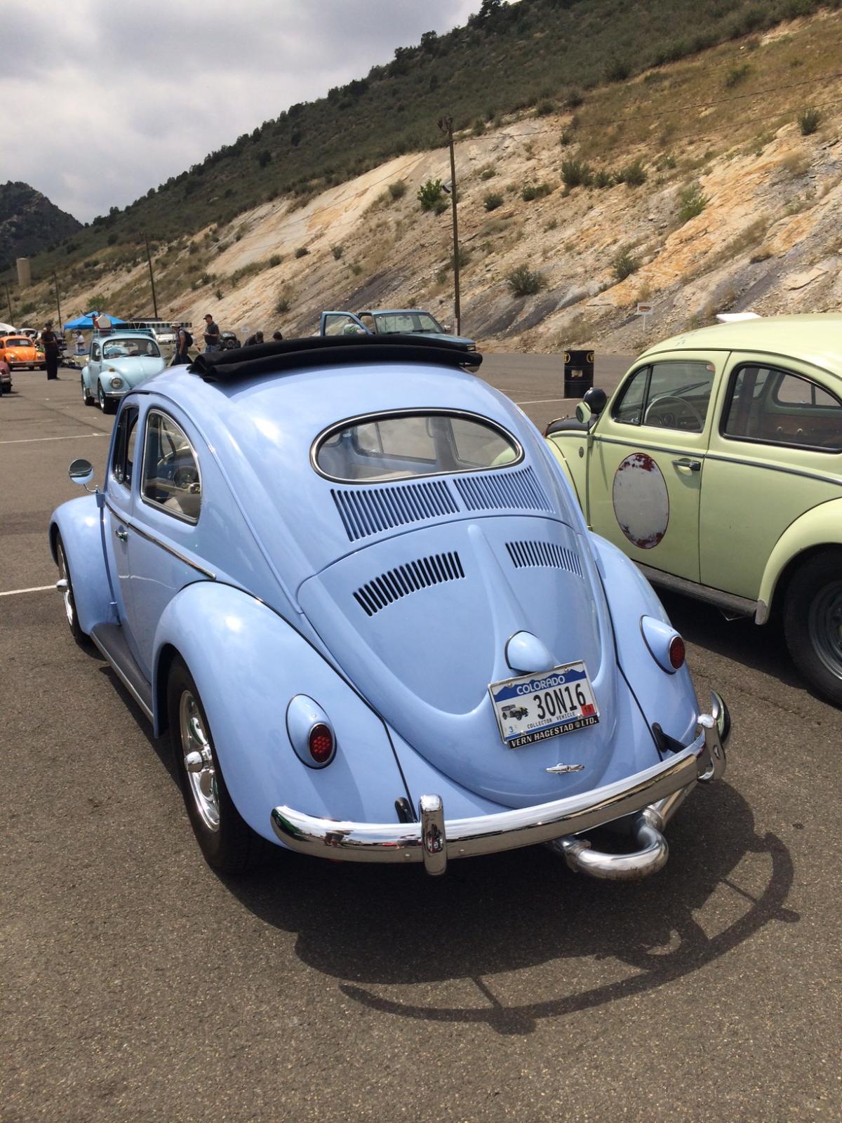 Colorado Bug-in 7.27.14