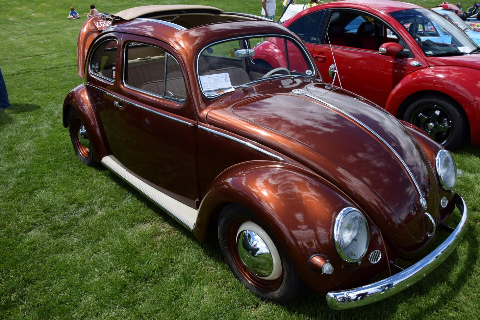 VWs on the Green 2015