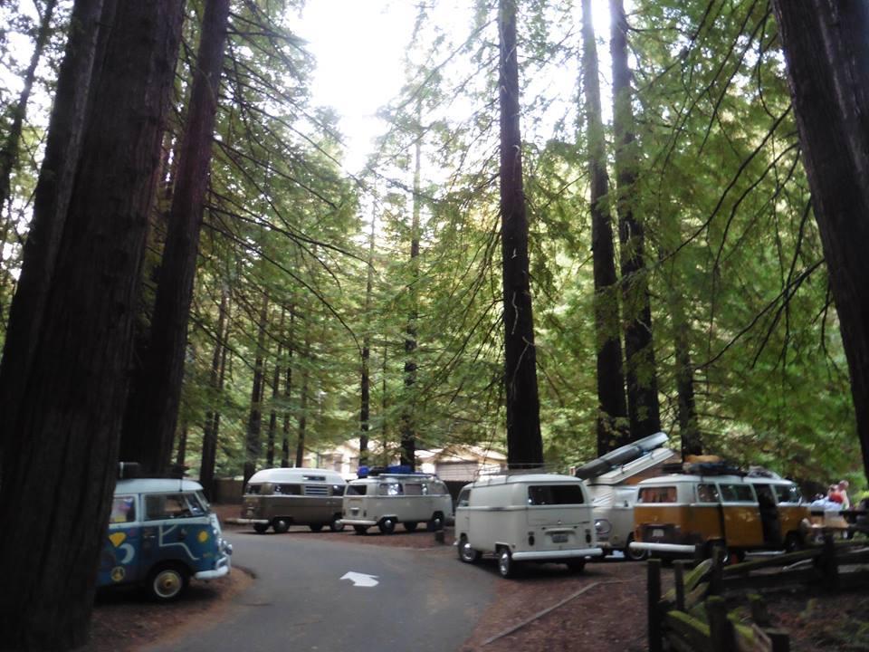 Burlington Campground Humboldt Redwoods
