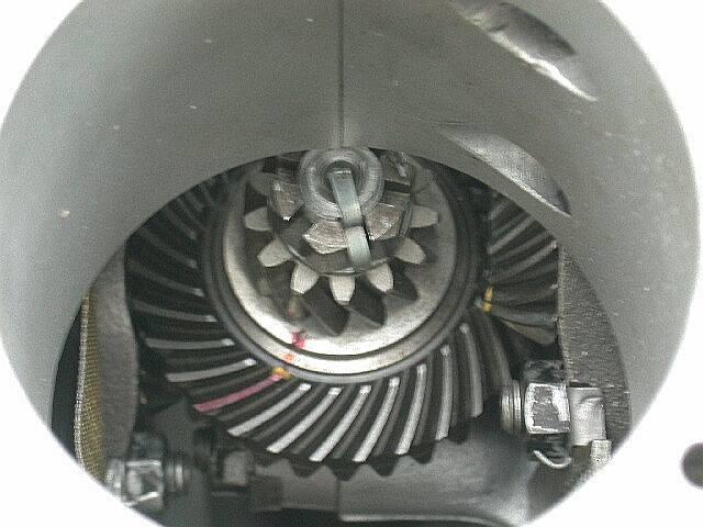 4 Cam / Spyder