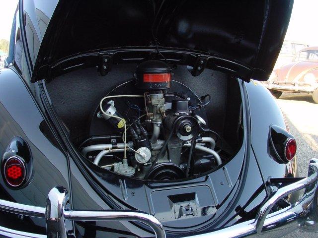 Engine of Oval Ragtop Beetle