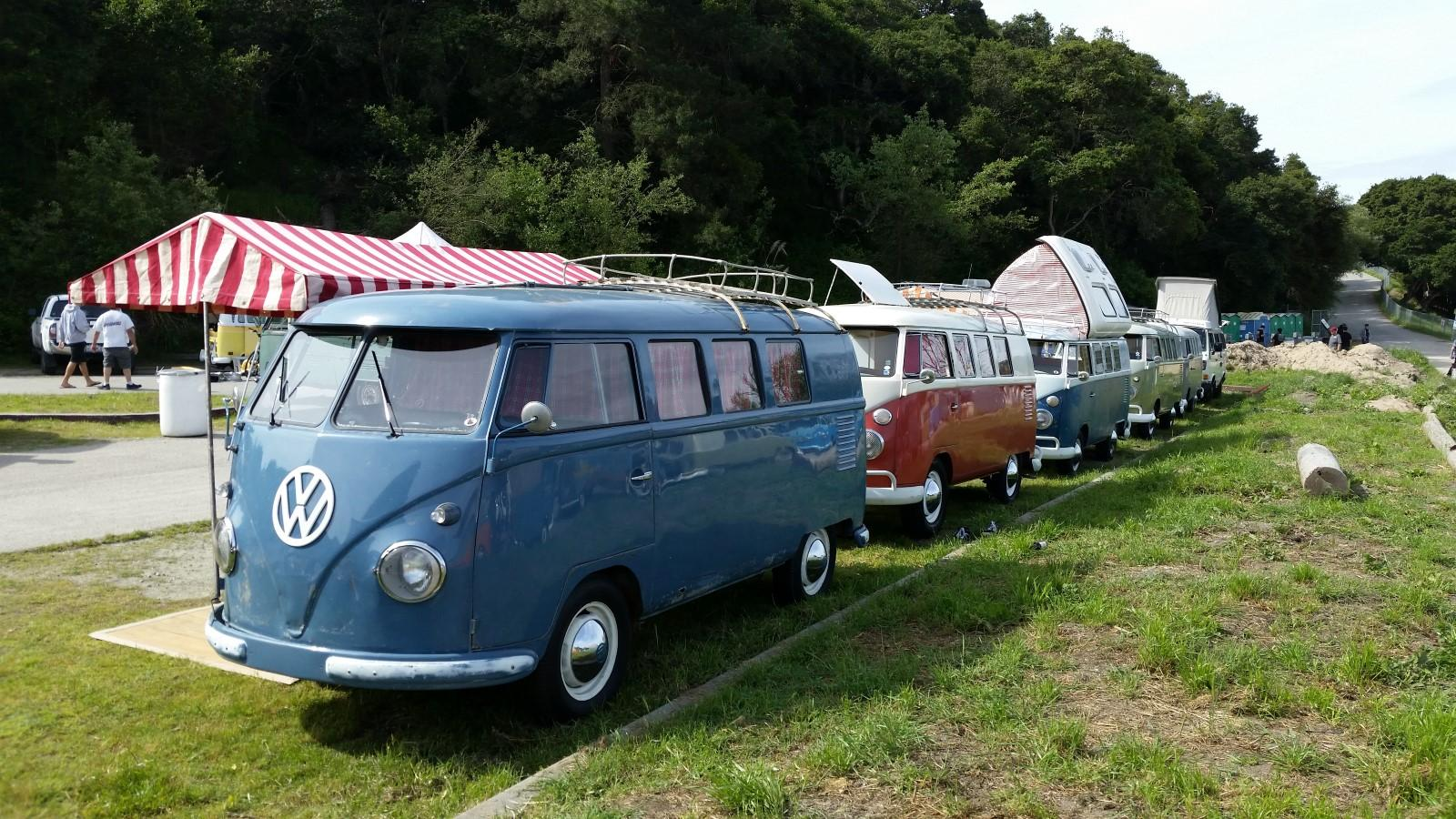 Westy line up at Red Barn 2017