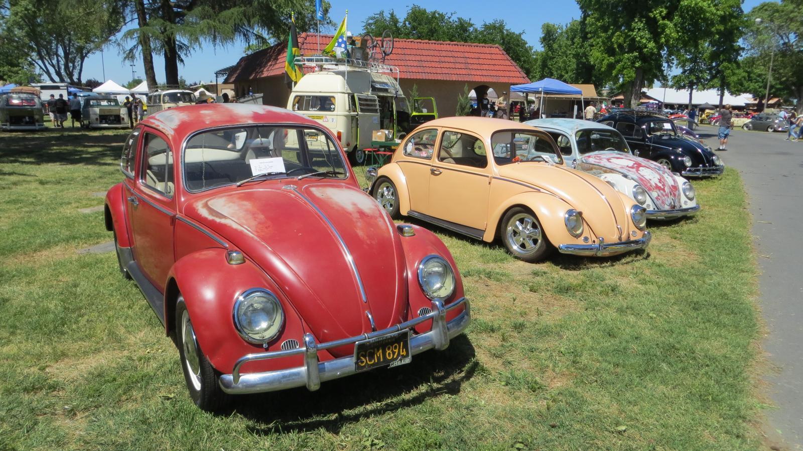 Sedan Bugs at the Medera Spring Fling 2017 (April 30th, 2017)