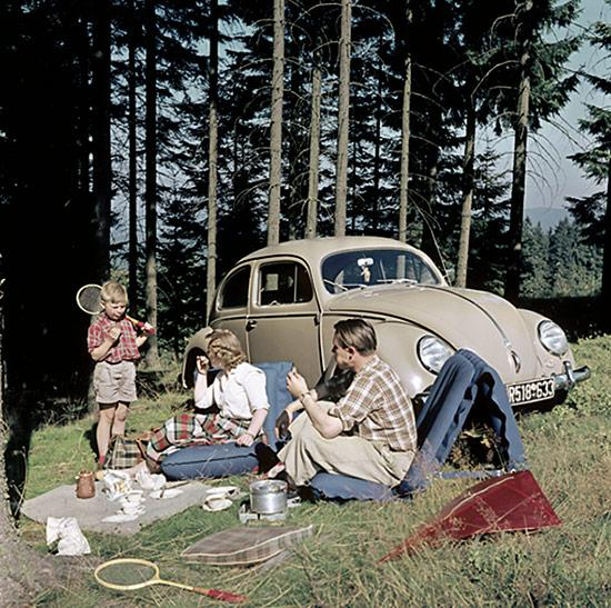 Picnic with Beetle