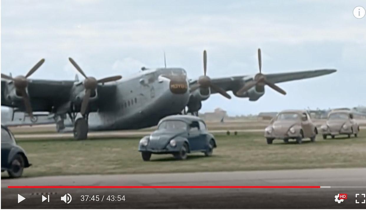 Berlin Airlift Beetles