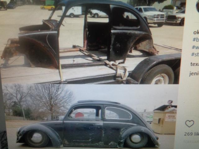 bagged1954 bug