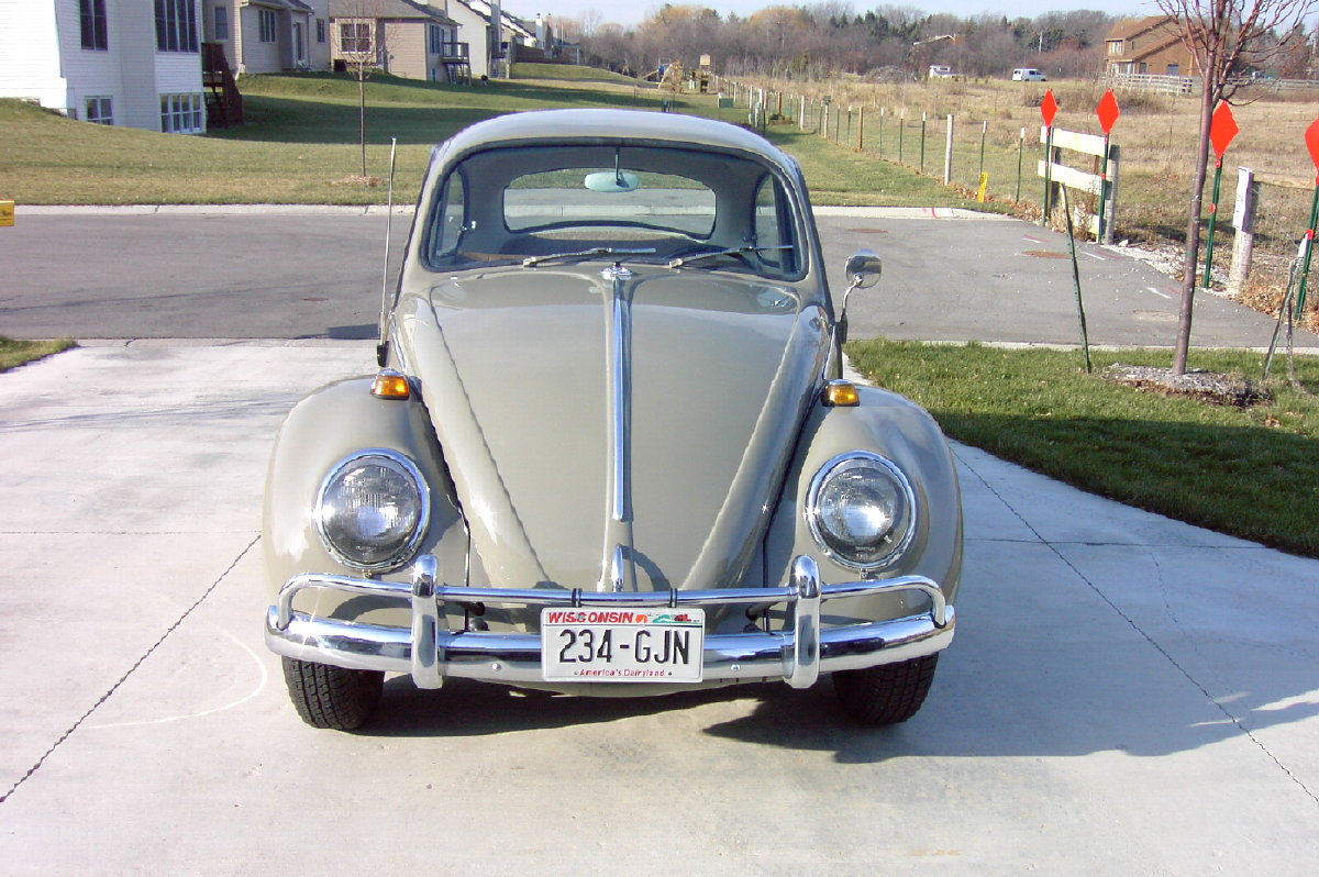 1966 Sea Sand Beetle