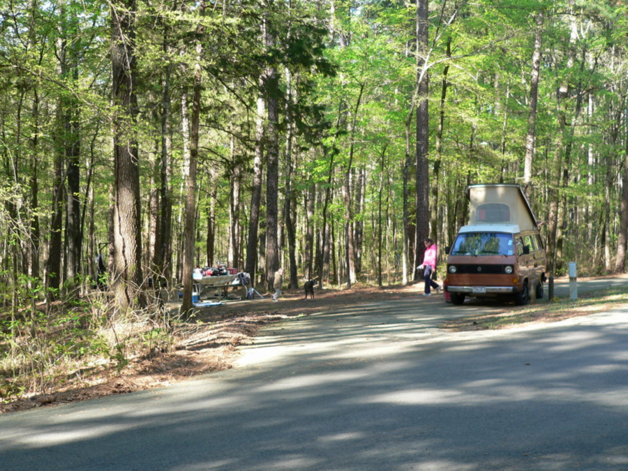 piney woods chat sites Complete information on rv parks and campgrounds in and near piney woods, texas.