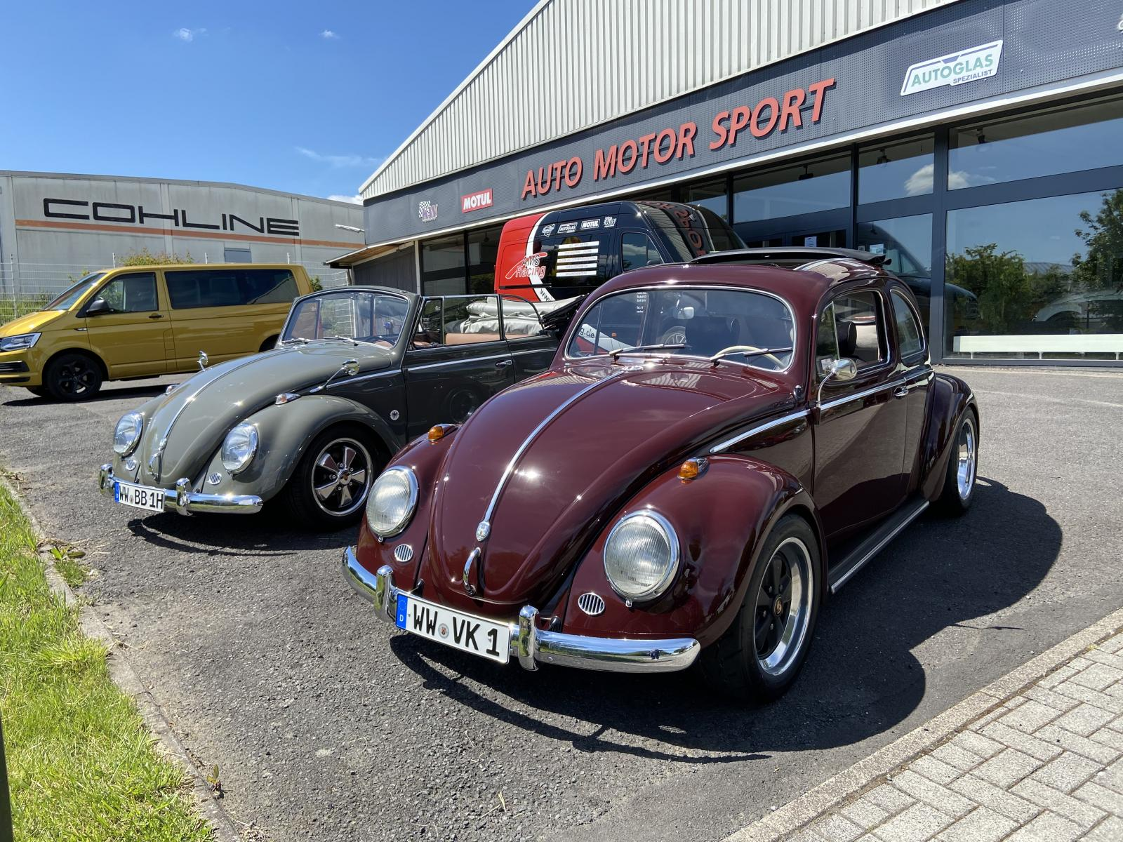 two bugs