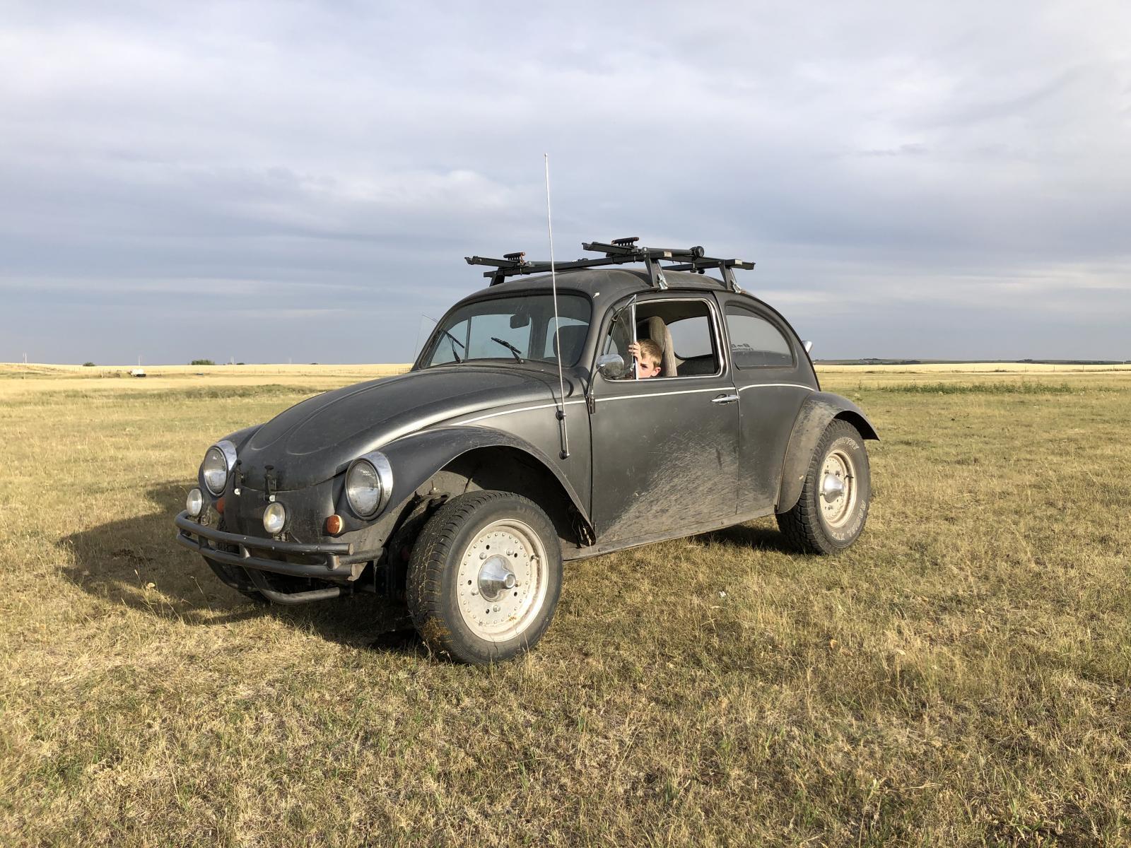 My 60 Baja