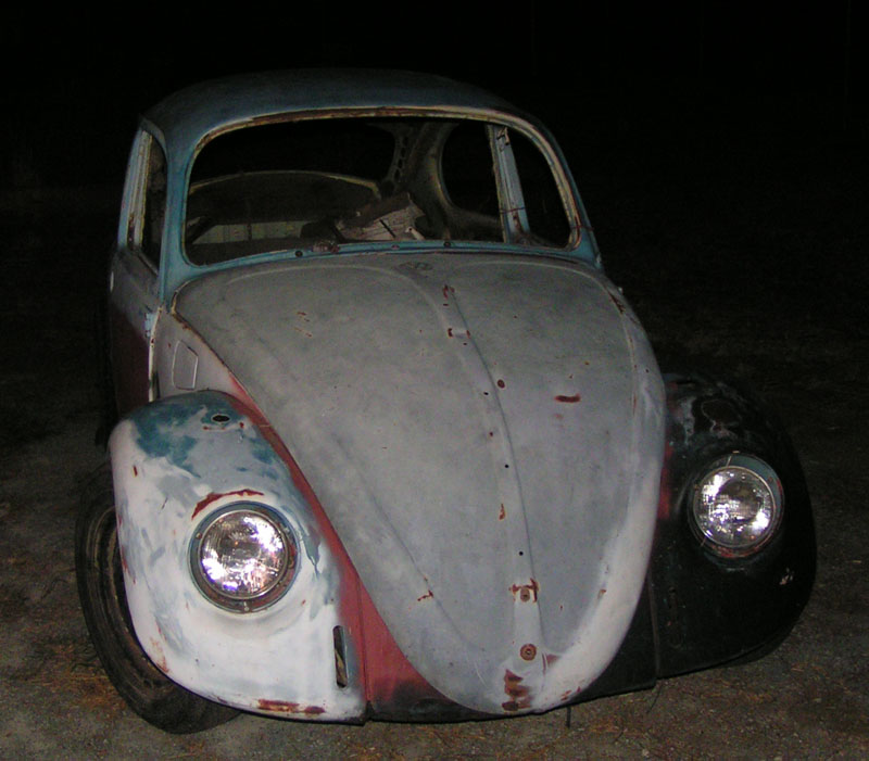 My First Bug