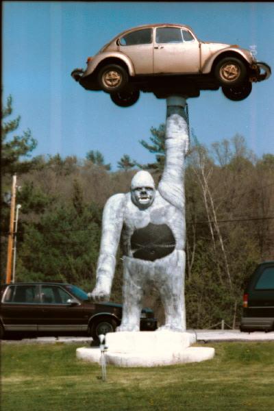 VW gorilla