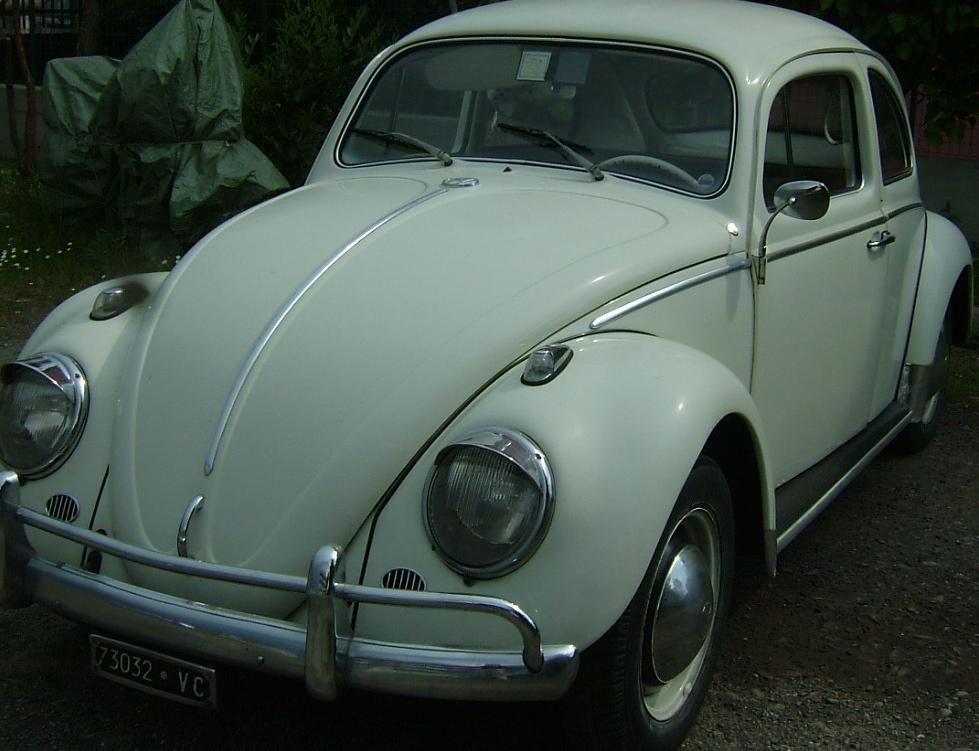 My 1962 bug has stolen in Pise