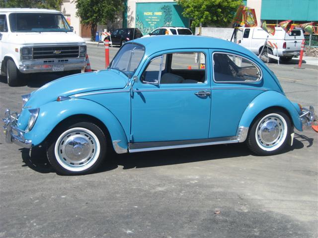 My 66 bug