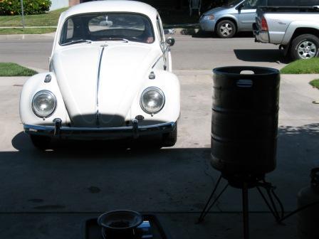 bug n brew