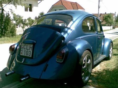 The Hungaryan bug