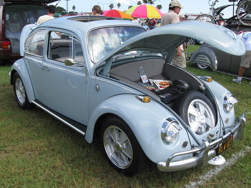 Steel Sunroof Bug