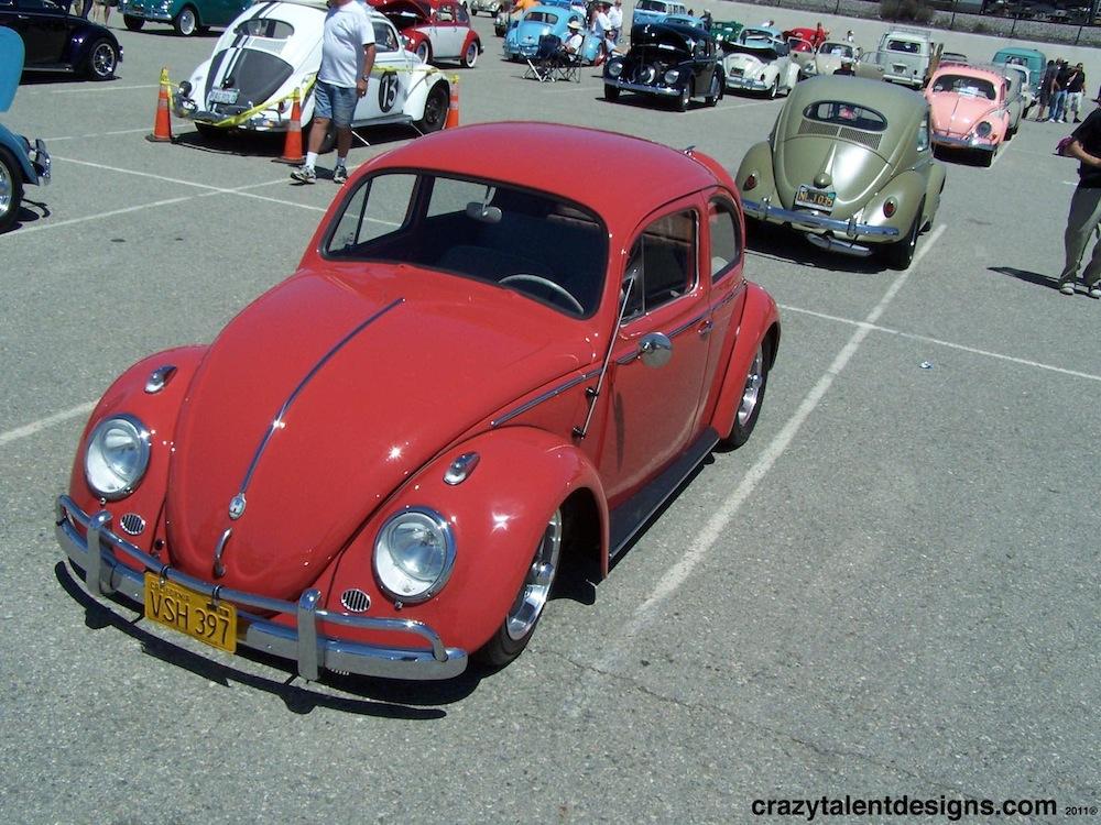 Bug In 36