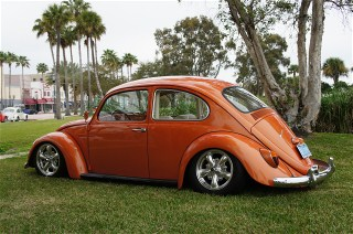 low 66 bug