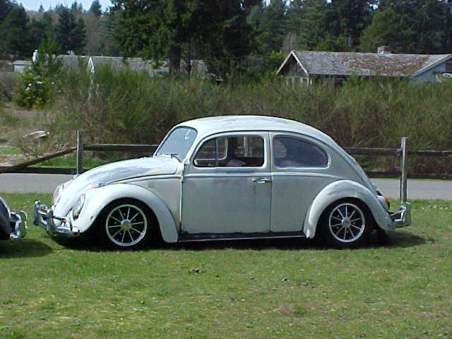 62 og paint beetle