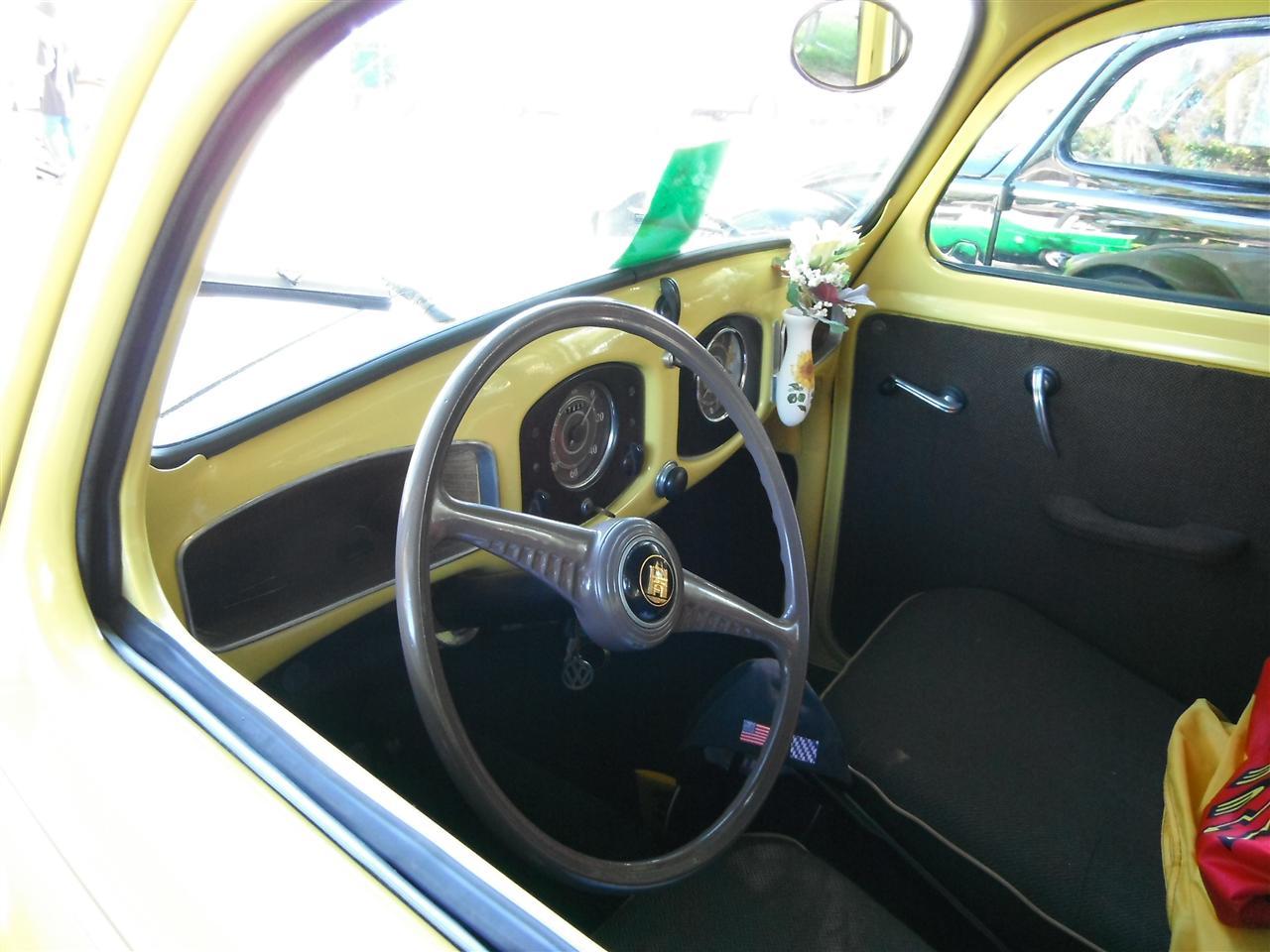 Yellow Split-Window Beetle with mail logos