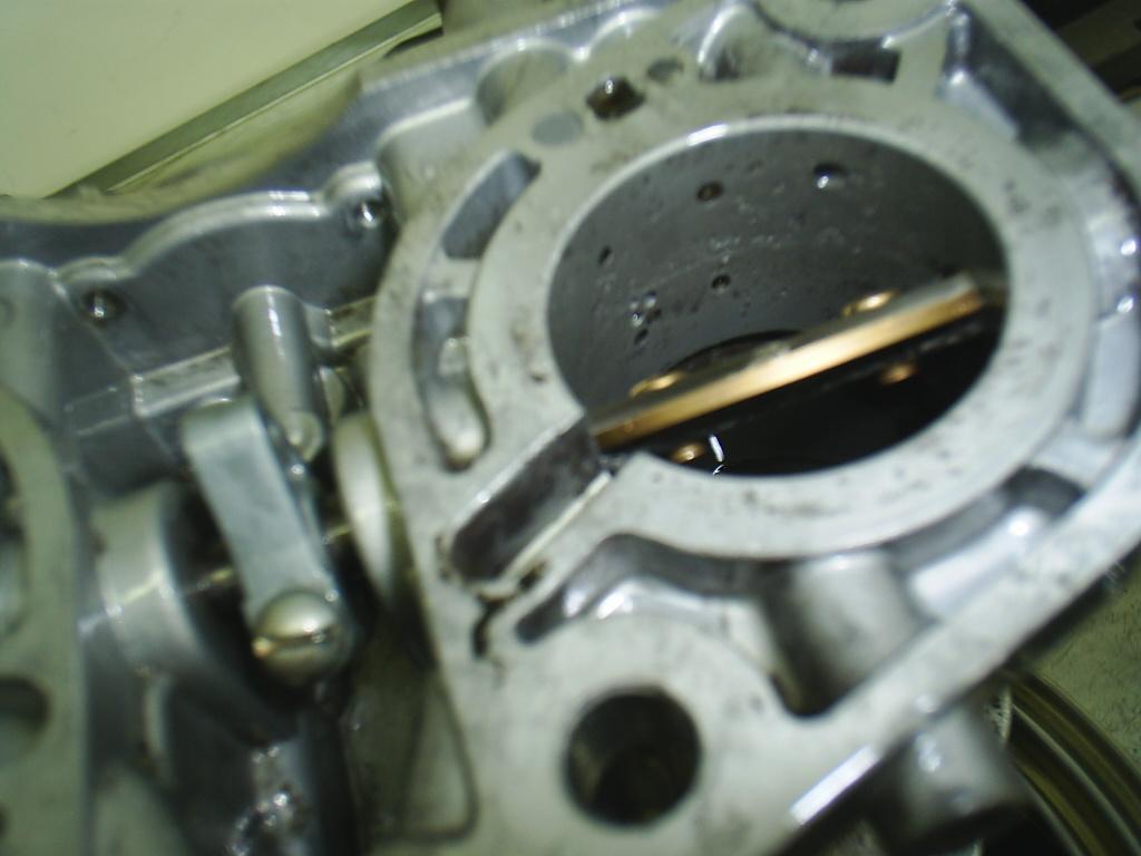 dellorto corrosion
