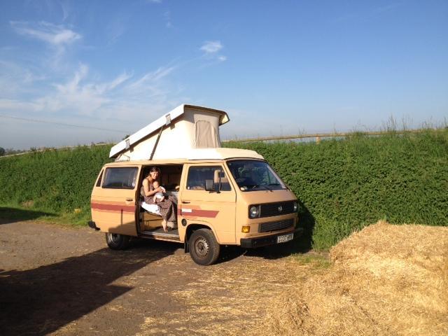 50 shades of brown van - stolen North London 11/11/12