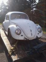 Life-Long Friend 1961 Beetle