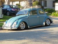 Todds Bug in Pasadena