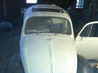 1967 Beetle project