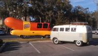 A wiener and a westy