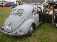split bug