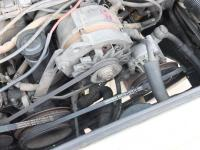 Power Steering Belt
