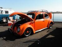 Orange Beetle