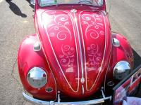 Beetle with graphics