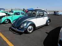 2-tone Ragtop Beetle