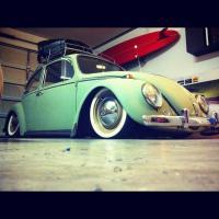 '66 bug