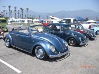 Bug-in 38th 2013
