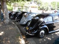 Split Beetle line-up