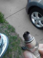 Fastbacks spark plugs