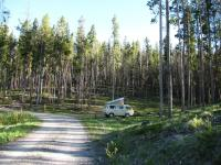 Beaver Dam National Forest campground