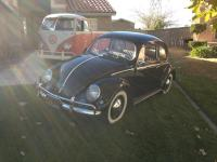 cliff's 1956 oval bug & cab