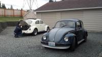 My 2 bugs