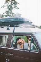 sydney in the van