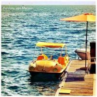 VW Paddle Boat