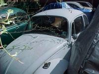 '67 Beetle Restoration